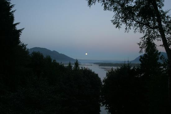 The Fraser River's Edge B&B Lodge: View from decking outside our room