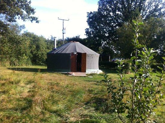 Suffolk Yurt Holidays: our yurt!