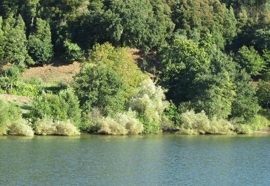 The Douro River: panorami che cAMBIANO 