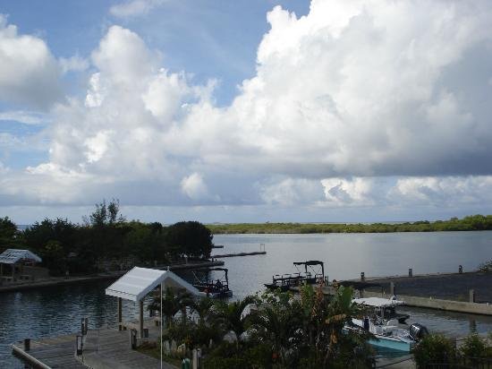 Barefoot Cay: View from the studio.