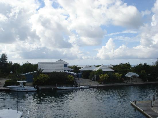 Barefoot Cay: View from the studion towards the island grounds andrestaurant.