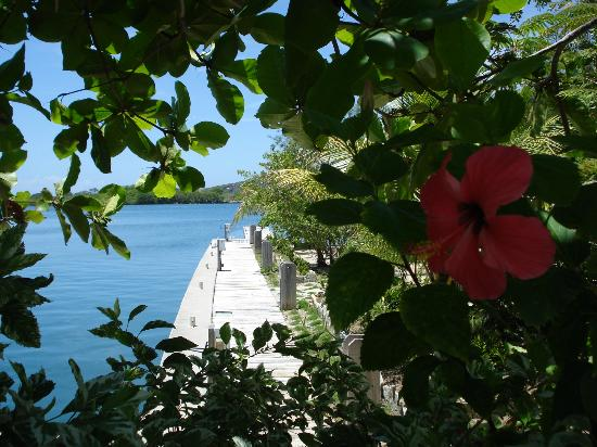 Barefoot Cay Resort: Marina view.