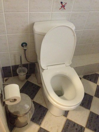 Olympion Village Hotel Studios & Apartments: Toilet