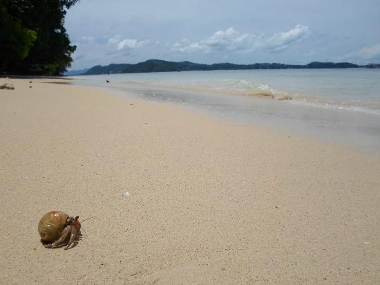SweetDreamers Charters - Private Day Trips: Lonely beach