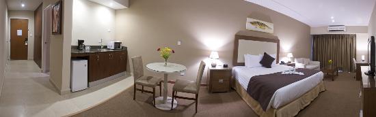 Central Park Hotel: Habitación Deluxe King - Vista a la Ciudad