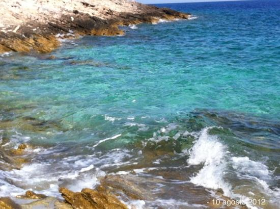 Gorgonia Diving: Martina Book un luogo incredibile un mare fantastico