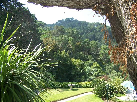 Quinta de Sao Thiago: Vista para a serra