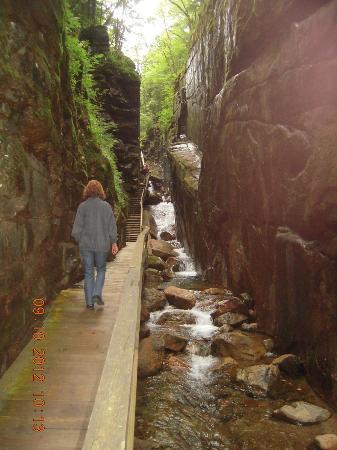 Mountain View Grand Resort & Spa: White Mountain Hiking