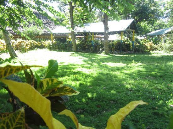 Le jardin picture of la cayenne hotel restaurant les for Vive le jardin 08