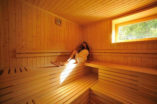 Garni Erna Mountain B&B: sauna bio