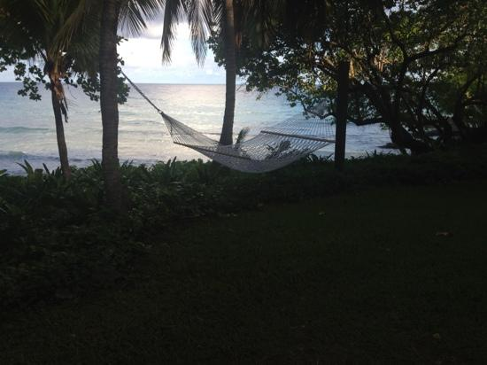 Renaissance St. Croix Carambola Beach Resort & Spa: one of the many hammocks throught the hotel