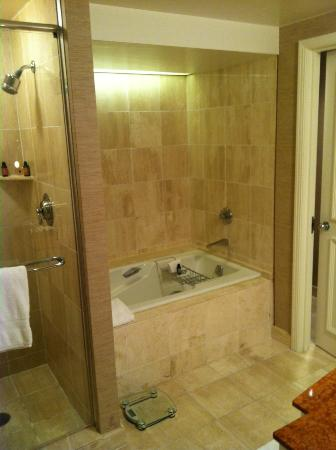 Four Seasons Resort and Club Dallas at Las Colinas: bathroom - beautiful