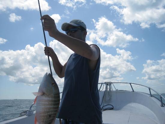 Xaloc Resort: Pesca del día para cenar en Xaloc.