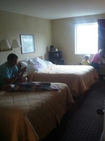 Econo Lodge Inn and Suites : Queen room. Mini fridge and mini microwave