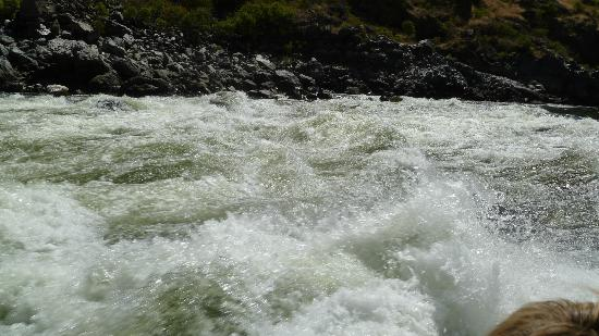 Killgore Adventures Hells Canyon Jet Boat Trips & Fishing Trips: Some Rapids