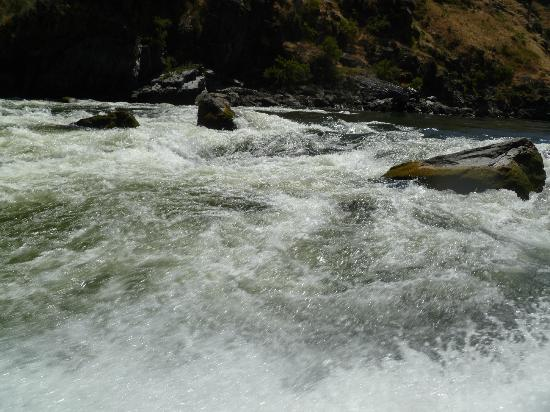 Killgore Adventures Hells Canyon Jet Boat Trips & Fishing Trips: More Rapids