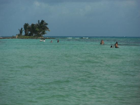 Picture of sol caribe sea flower hotel san andres for Sol caribe sea flower san andres