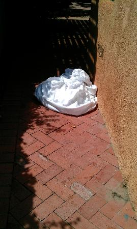Old Town Bed and Breakfast: Sheets on the walkway