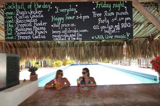 Buddy Dive: Cool down at the Poolbar
