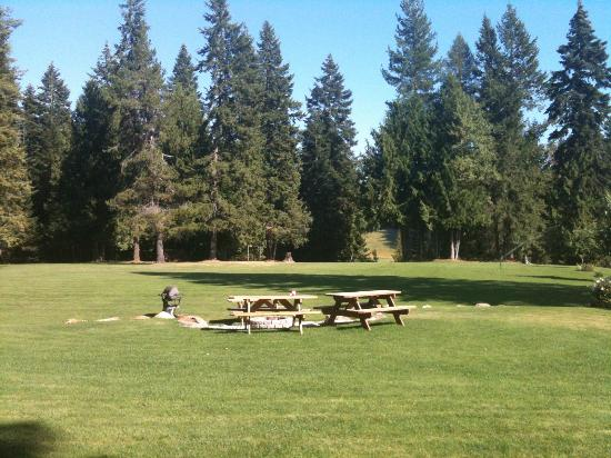 Western Pleasure Guest Ranch : Front lawn, picnic area with a view of one of the many meadows in the distance