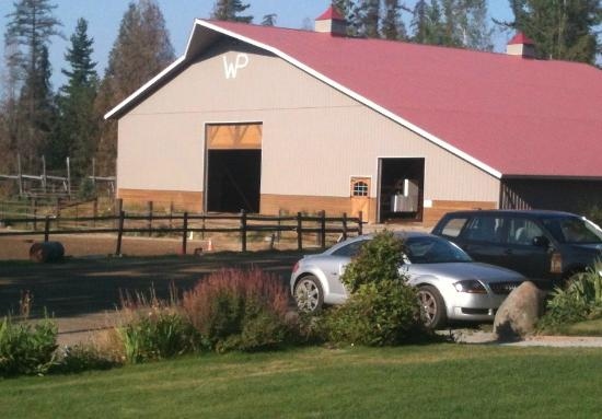 Western Pleasure Guest Ranch: Horse barn - very spacious for getting started on a ride