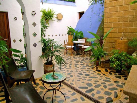 Patio interior con muchas plantas picture of casa for Plantas para patios