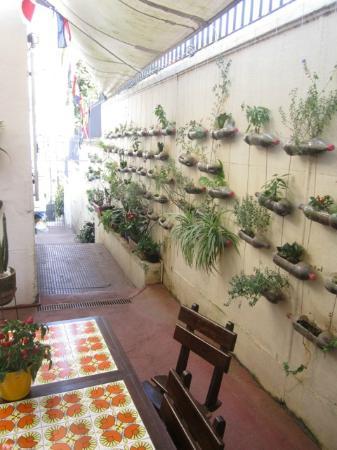 Casalegre Art Vila B&B - Santa Teresa: horta