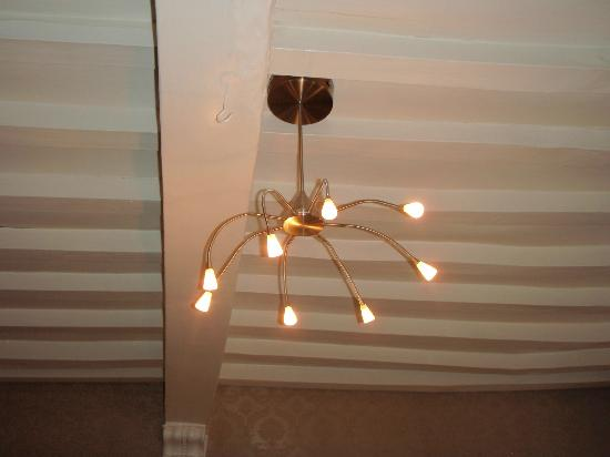 Brasserie Hotel de Nymph : Stylish light fixture