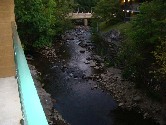 Old Creek Lodge : river from balcony