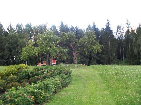 Hotel Scherer: il giardino sul retro