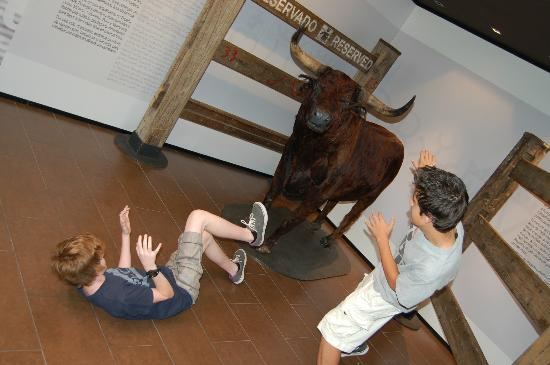Museo del Encierro Museum: My boys hamming it up for the camera ! Another actual bull from a past festival.