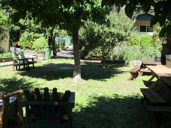 Fern Grove Cottages: Garden that is available to the guests