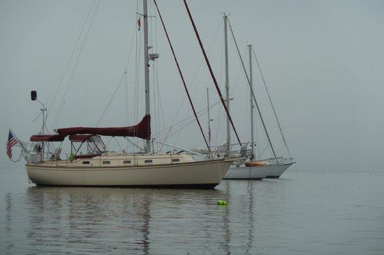 Sail Casco - Tours: Saorsa on anchor