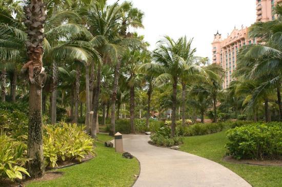 Atlantis - Harborside Resort: Landscaping