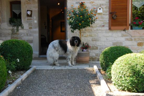 Hôtel La Chouette : Angie greeting guests