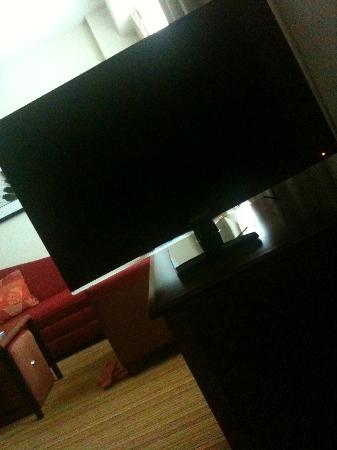 Residence Inn by Marriott Miami Aventura Mall: swiveling tv :)