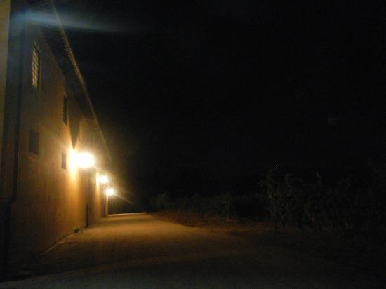 Agriturismo Tenute di Badia: Esterni, notturno