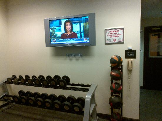 Hampton Inn & Suites Chicago - Downtown: Gym