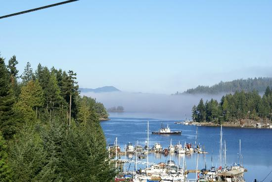 Enchanter Oceanview Suites: Early morning mist on the harbour