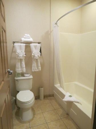 The Inn at Rolling Hills: bathroom