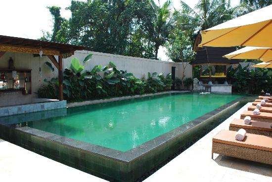 Sri Phala Resort & Villa: Pool area