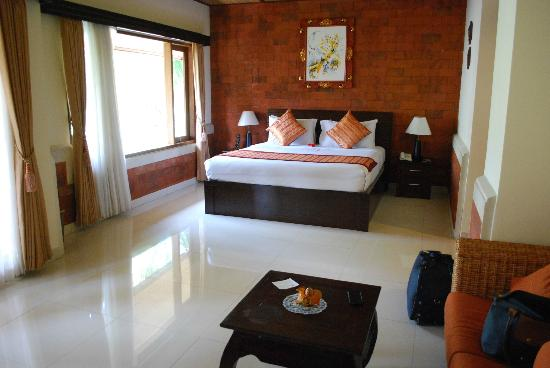 Sri Phala Resort & Villa: My room - view #1