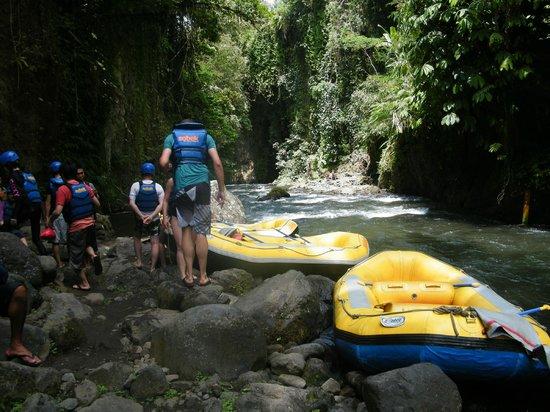 Bali Sobek Ubud 2020 All You Need To Know Before You Go With Photos Tripadvisor