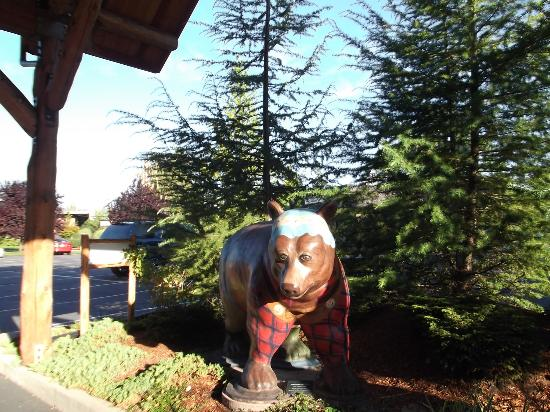 The Lodge at Riverside: greeting bear