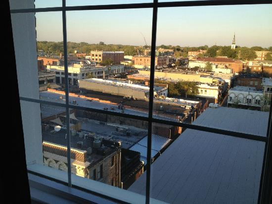 The Tiger Hotel: View from the 8th floor