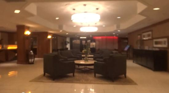 DoubleTree by Hilton Hotel & Suites Pittsburgh Downtown: Nice lobby. Surprised it didn't have an atrium.