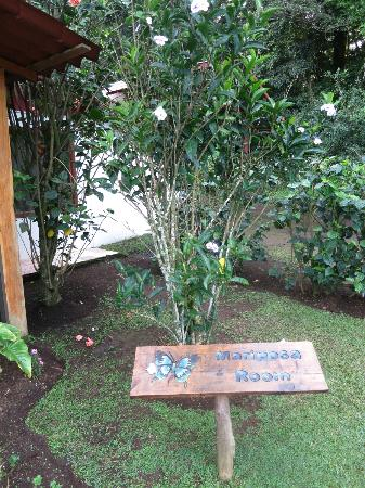 Casa Batsu: hotel grounds