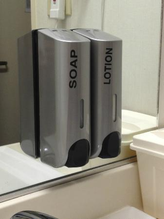The Loyal Inn: Hand soap and lotion dispensers above the wash basin