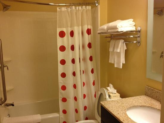 TownePlace Suites Albany Downtown/Medical Center: bathroom