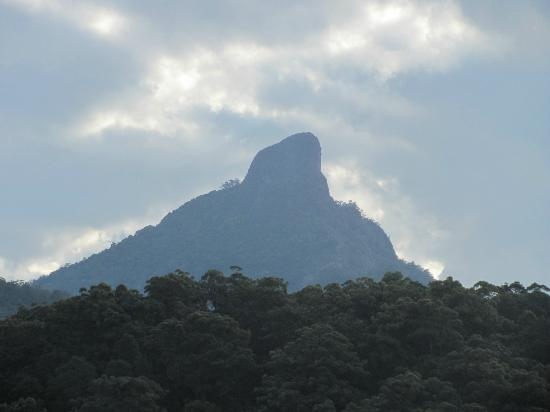 A View of Mt Warning Bed and Breakfast: Mount Warning
